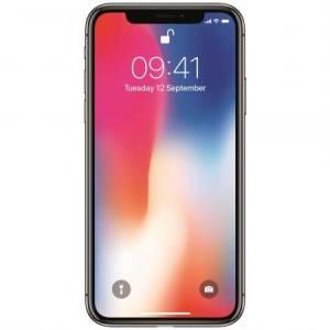 Apple iPhone X 256GB Gray Neverlocked
